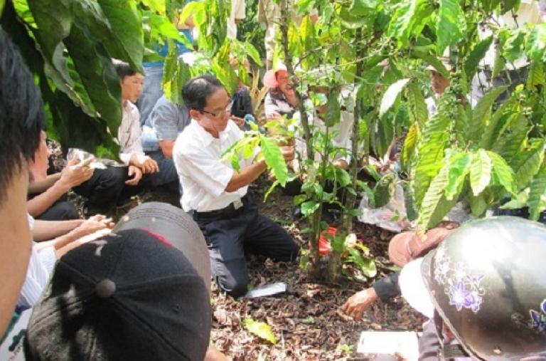 """Tổng Kết Chương trình đào tạo ngoài mô hình Dự án """"Sản xuất cà phê bền vững được cấp giấy chứng nhận tại Tây Nguyên"""""""