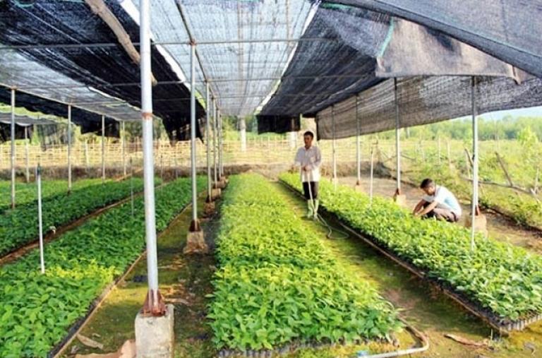 Đầu tư nguồn nhân lực chất lượng cao cho hợp tác xã nông nghiệp