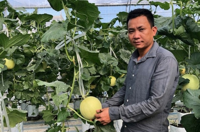 Thu bạc tỷ từ nông nghiệp công nghệ cao