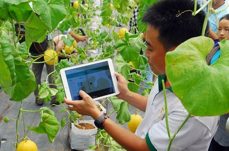 Nông nghiệp Việt: Sẵn sàng đón vận hội mới từ công nghệ số