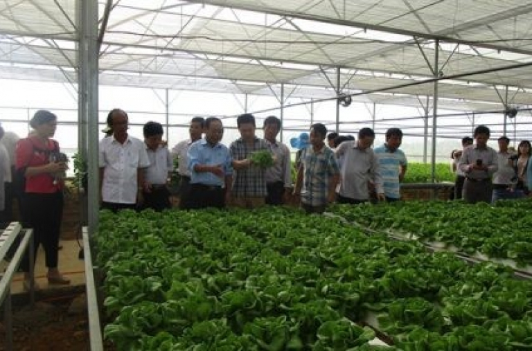 Nông nghiệp hữu cơ thích ứng với biến đổi khí hậu