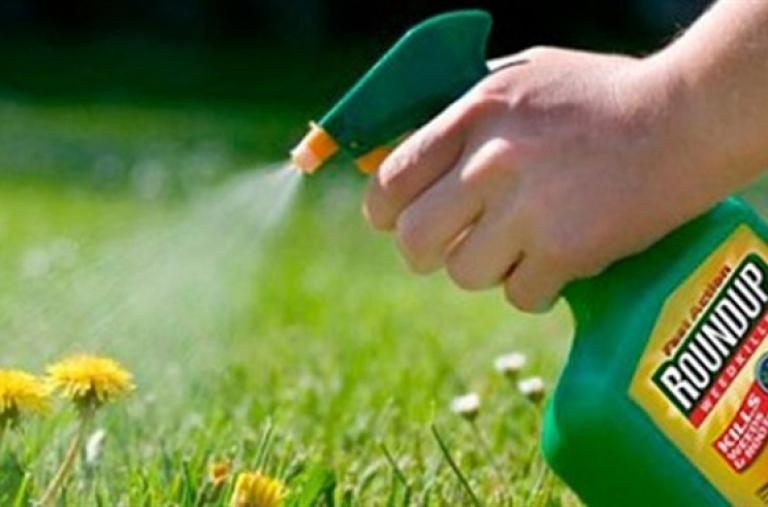Loại Glyphosate khỏi danh mục thuốc bảo vệ thực vật được phép sử dụng tại Việt Nam