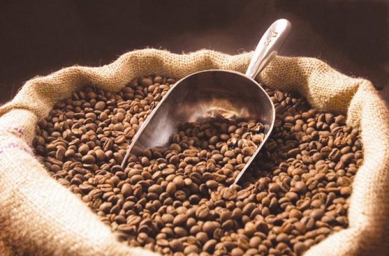 Giá cà phê Tây Nguyên ngày 13/08/2020 tăng nhẹ trở lại 100 ngàn đồng/tấn