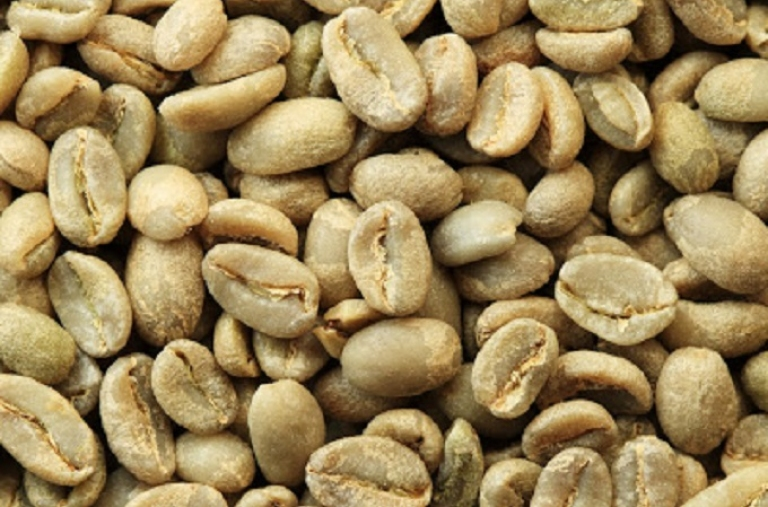 Giá cà phê Tây Nguyên ngày 14/08/2020 tăng mạnh 600 ngàn đồng/tấn