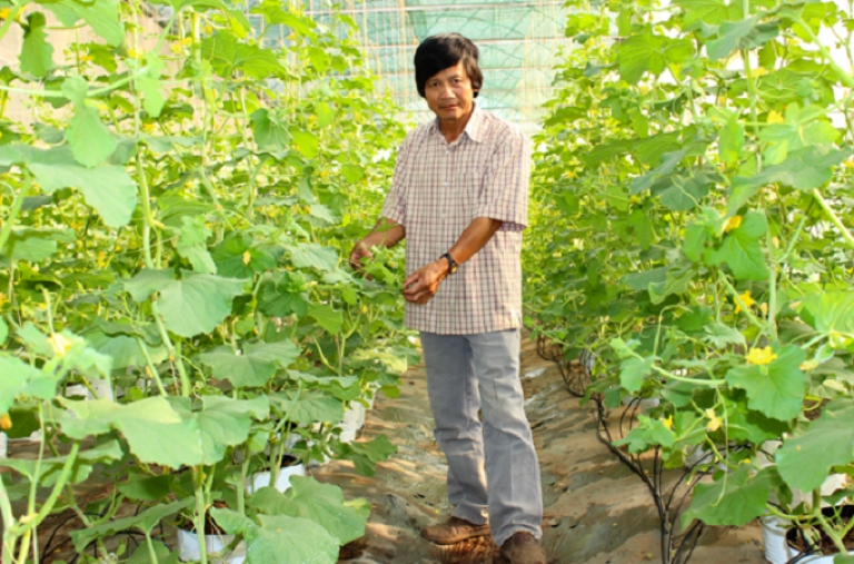 Kiểm soát an toàn thực phẩm nông nghiệp để nâng cao hiệu quả kinh tế