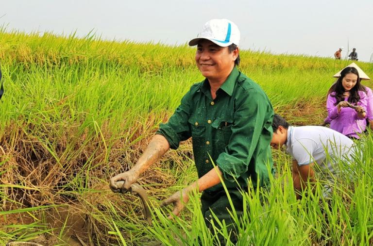 Quảng Trị: Theo đuổi nông nghiệp hữu cơ, bán lúa tươi, nhận tiền tươi ngay tại ruộng