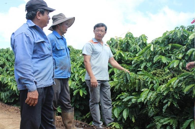 Đak Đoa đẩy mạnh tái cơ cấu ngành nông nghiệp