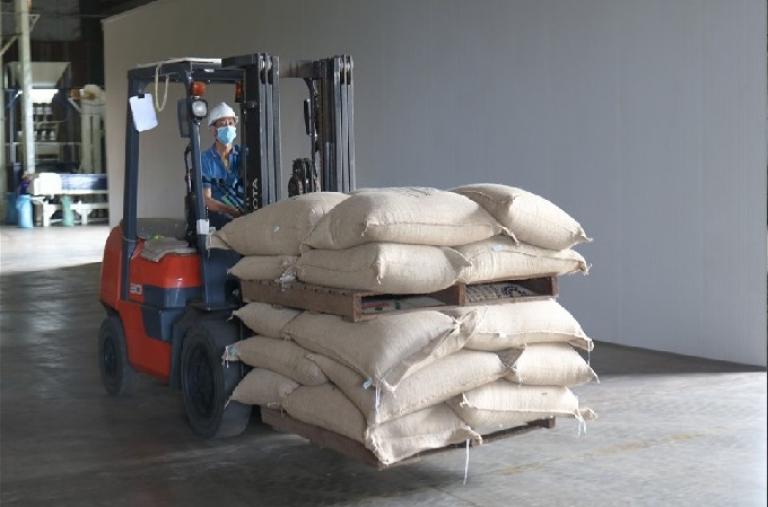 Giữa mùa dịch, doanh nghiệp Đắk Lắk xuất khẩu lô cà phê lớn sang Anh