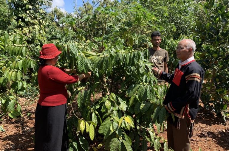 Hướng đến vùng nguyên liệu cà phê đặc sản